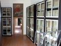 livello2 biblioteca